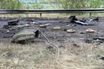Террористы ведут минную войну вопреки Оттавской Конвенции, — Минобороны (ФОТО)