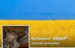 Батальон Айдар сообщает о гибели девяти бойцов